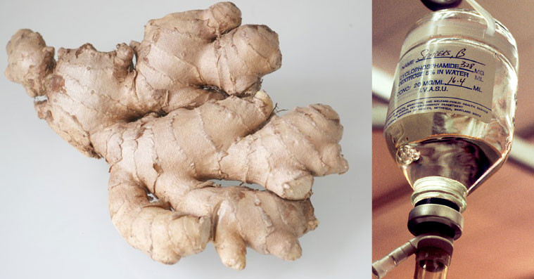 Ginger is the monumentally superior alternative to chemotherapy
