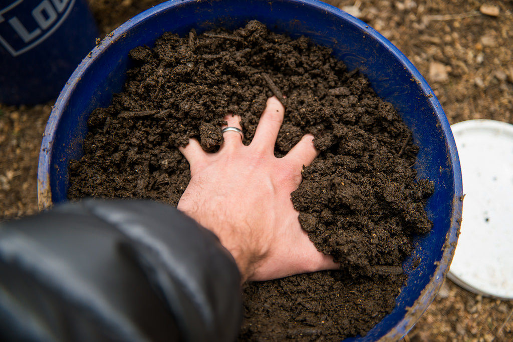 This No Till Gardening Method Will Help You Feed Your Soil