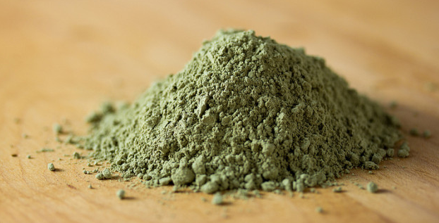 Where to buy the best, organic hemp protein powder