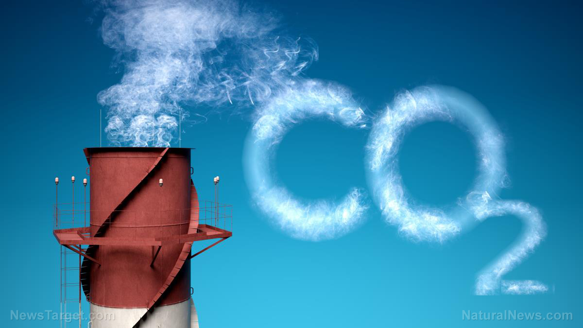 "Image: Carbon dioxide ""pollutant"" myth totally DEBUNKED in must-see science video"