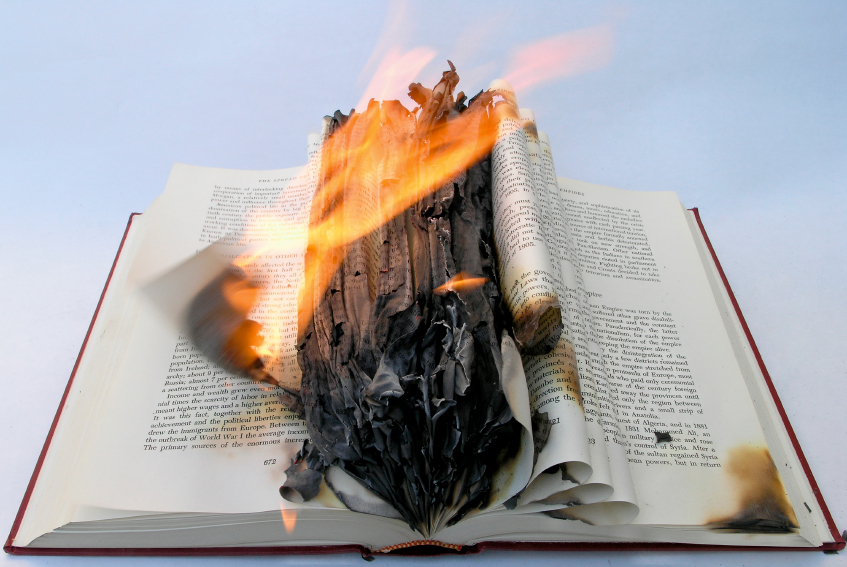 "Image: Google goes Nazi, wages ""book burning"" of the entire Natural News website to eliminate human knowledge of vaccine dangers"