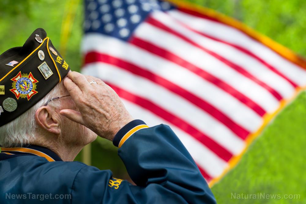 Veteran-American-Flag-Senior-Us-Disabled-Old.jpg